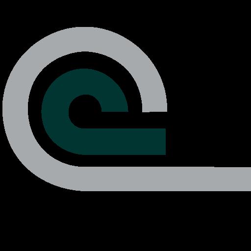 Chemin Corp